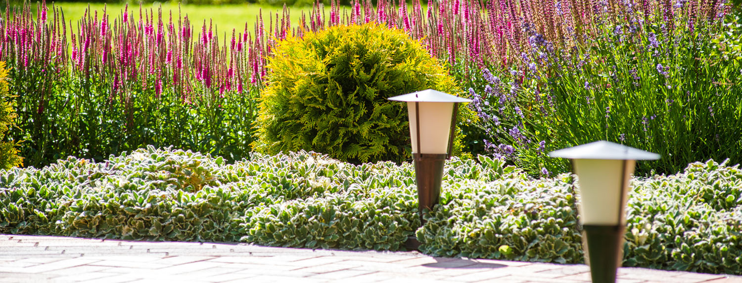 Landscaping services in Newcastle, Co Dublin